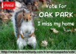 Verendrye Electric - Vote for Oak Park!