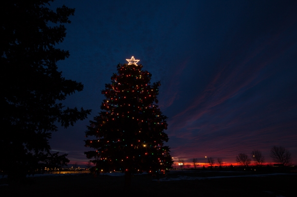 Basin-Christmas-Tree-sunrise-1