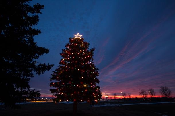Basin-Christmas-Tree-sunrise-2