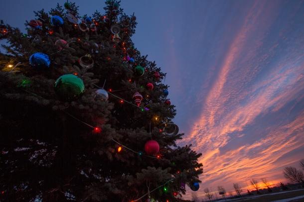 Basin-Christmas-Tree-sunrise-5