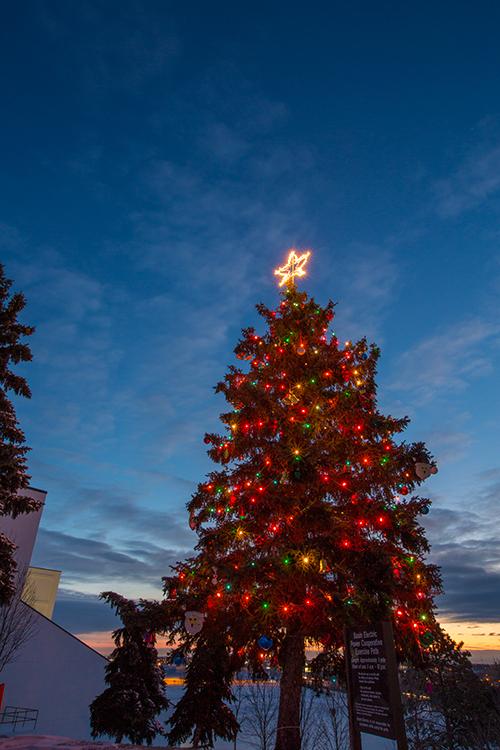 Basin Electric employee Christmas tree 2013