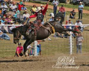 Goldenwest-rodeo-2016