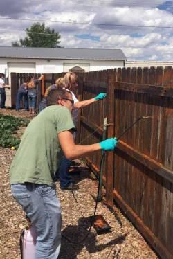 UW-helping-hands-staining