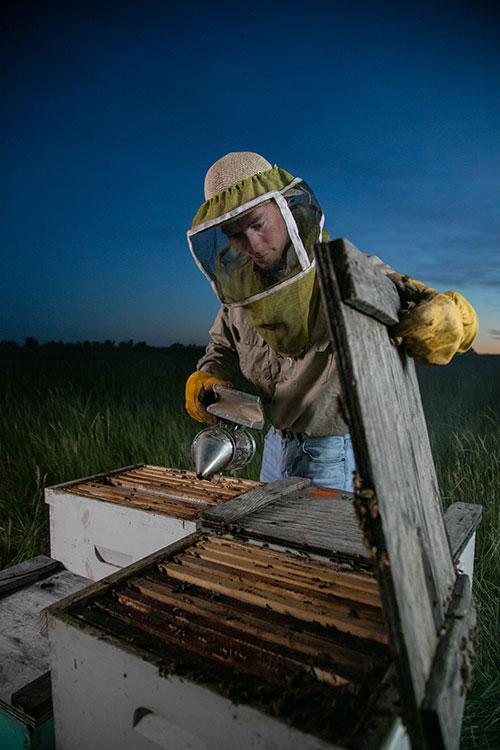 Dusty Backer, Backer Bees, at the reclaimed coal mine, Glenharold Mine.