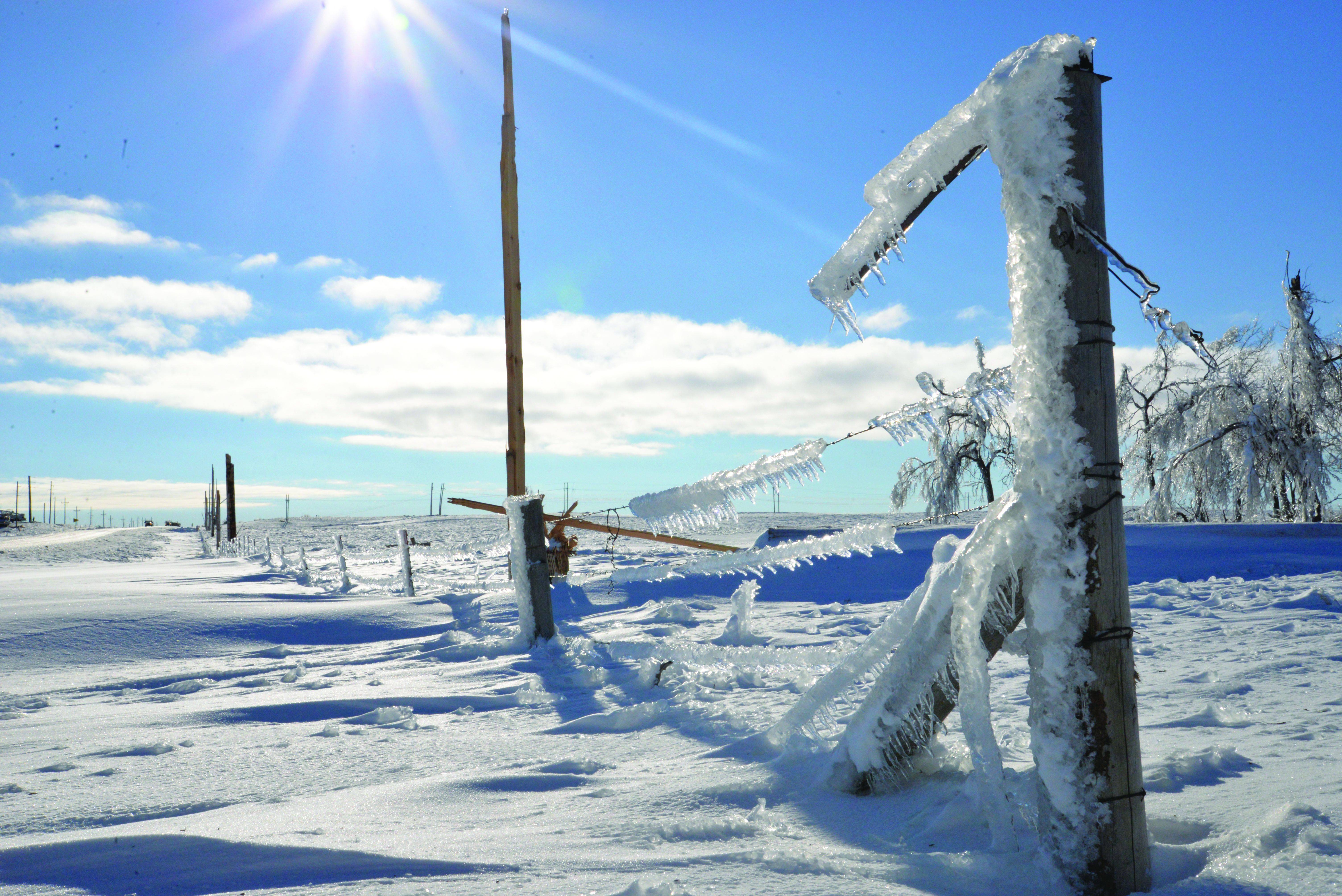 Social media helps co-ops communicate during winter storm – Basin ...